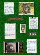 The Northen Hairy-nosed Wombat's thumbnail