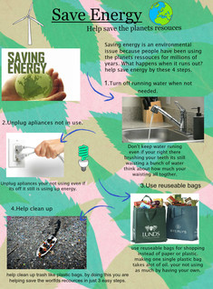 Paytanne Steele Energy Saving