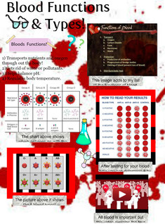 Blood (functions and types)