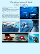 MARINE MAMMALS IN CAPTIVITY's thumbnail