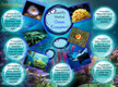 Scientific Method: Ocean Ecosystem thumbnail