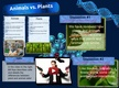 Animals vs. Plants - Chris' Glog thumbnail