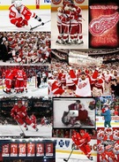 red wings's thumbnail