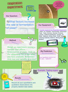 Cell Respiration's thumbnail