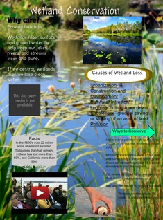 Wetland Conservation