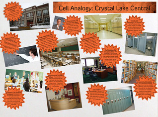 Cell analogy - crystal lake central