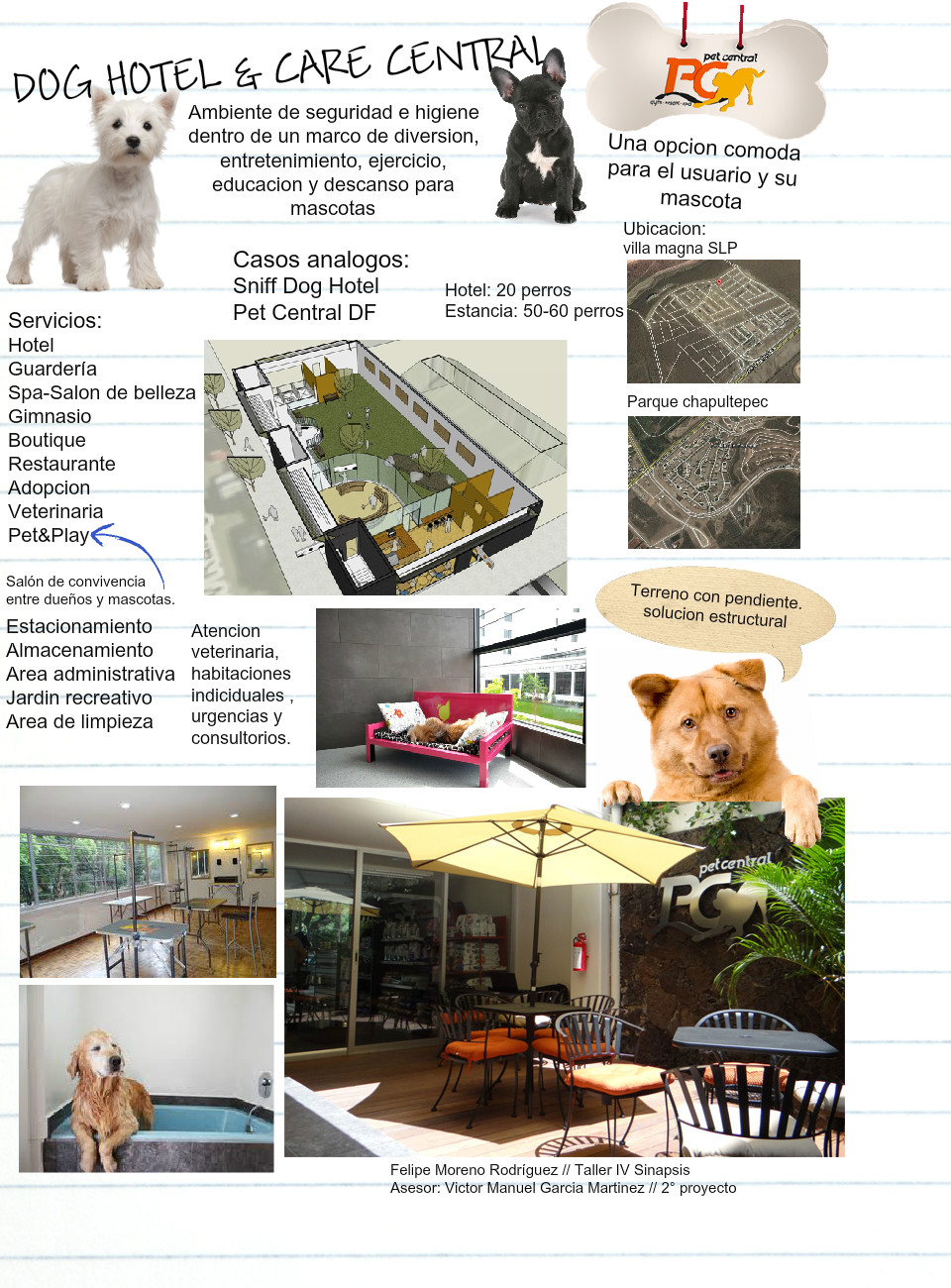 Dog hotel and care central