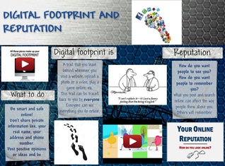 Digital footprint and reputation