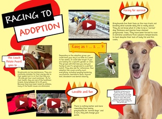 Racing to adoption