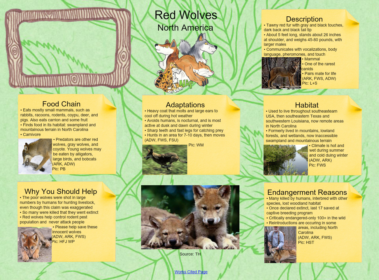 Red Wolves: adaptation, animals, chain, description, en
