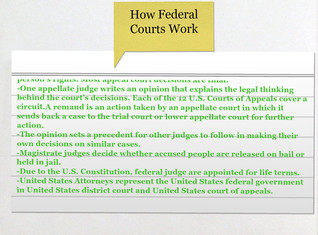 How Federal Courts Work