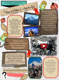 Ecology at Mount Everest