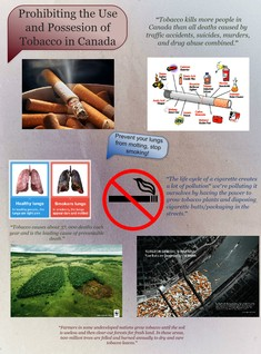 The Use and Possession of Tobacco should be Prohibited in Canada