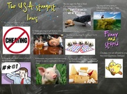 The USA Strangest Laws' thumbnail