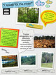 APES Forests 2 thumbnail