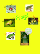 Frogs's thumbnail